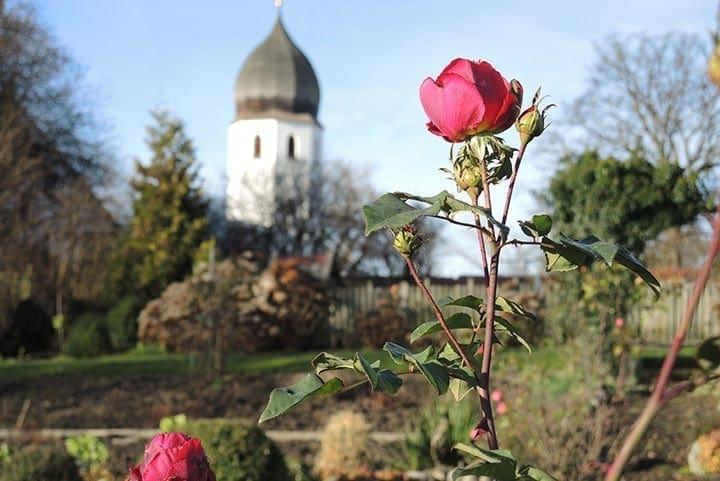 Klostergarten Frauenchiemsee